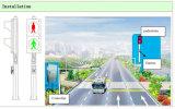 Sinal de tráfego de piscamento Pedestrian do sinal da luminância elevada/diodo emissor de luz para o cruzamento Pedestrian