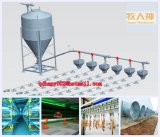 Geflügel bringen Gerät mit Stahlaufbau von Qingdao Superherdsman unter