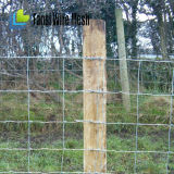 Cerca galvanizada da exploração agrícola da junção de dobradiça com mais baixo preço