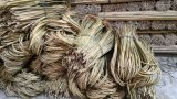 Cañas de bambú U