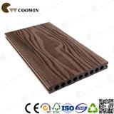 Сборные дома низкая цена WPC декоративной плиткой (TS-04)