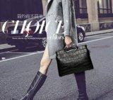 Pu Zak Crossbody van de Hand van Dame Handbag Hot Sell Designer de Eenvoudige Dames (WDL0186)