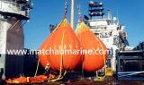 Kran-Beweis-Eingabe-Prüfung Waterbags