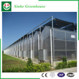 Solo invernadero de cristal de Venlo de los sistemas de control del palmo para Growing vegetal