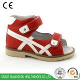 児童保健は子供のトマスのかかとが付いている平らなフィートの防止の靴に蹄鉄を打つ