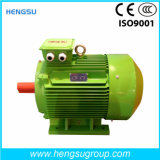 Электрический двигатель индукции AC Ye3 75kw-4p трехфазный асинхронный Squirrel-Cage для водяной помпы, компрессора воздуха