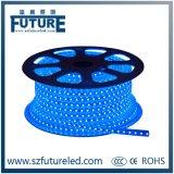 AC220V impermeabilizan la iluminación de tira de SMD5050 LED en blanco caliente