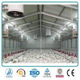 Bestiame pre fabbricato del pollame della struttura d'acciaio che coltiva le tettoie