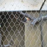 Le zoo de corde de fils en acier inoxydable le grillage de séparation mesh tissé rampe d'Escalier Mesh