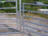 panneaux en acier lourds de corral de 5FT X10FT