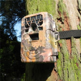 12MP HD 1080P Black IR Camera Trap