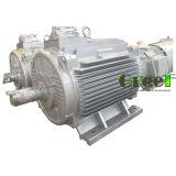 ハイドロ使用のための低いRpm 30kwの永久マグネット発電機