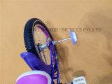 Última Venda Nova Girl Bike/Girl aluguer/bebê/aluguer de bicicletas para crianças