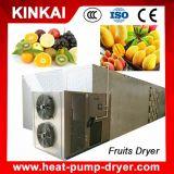 Novo Estilo de aquecimento circulantes Secadora de frutas