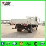 HOWO 10 톤 판매를 위한 경트럭 4X2 가벼운 Catgo 트럭