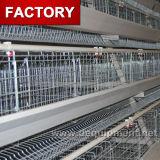 Cage galvanisée de vente chaude de poulet avec les câbles d'alimentation et les buveurs manuels à vendre