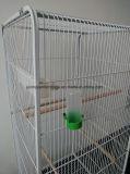 Большая клетка провода дома любимчика клетки металла клетки попыгая клетки птицы