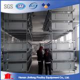 Cage de poulet de volaille galvanisée par type de la qualité H