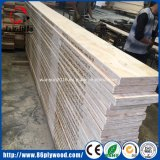 De Populier van de Producten van het hout/LVL van de Pijnboom voor de Plank van de Straal en van de Steiger