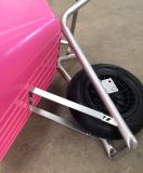 Ferramentas da exploração agrícola e carrinho de mão de roda do equipamento