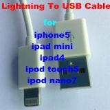 La foudre 8 broches vers câble USB Câble de synchronisation des données et chargeur pour l'iPhone5/L'iPad4 Mini/iPad/iPod touch5, l'iPad nano7