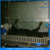 Ce Cattle Halal Slaughtering Line con Abattoir Machines