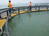 HDPE釣ケージの海Aquaculatureのための深海の浮遊栽培漁業のケージ