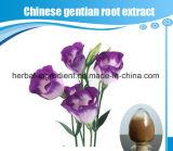 Природные Китайский Gentian, экстракт корня Gentiana Scabra Bge академия