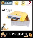 Ce keurde Kleine Incubator voor de Eieren van de Kwartels van de Kip goed