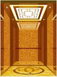 تكنولوجيا [جرمن] مصعد سكنيّة بيتيّة في مسافر مصعد ([رلس-222])