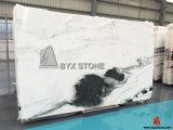 Lastra di marmo bianca del panda con le vene nere per il controsoffitto, parete