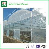 Multi serra della pellicola della portata Po/PE della Cina per piantare