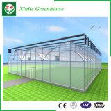 Invernadero de una sola capa de la película de polietileno de la agricultura