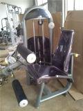 Enrollamiento de pierna asentado equipo comercial de la gimnasia Xc11