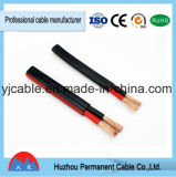 câble plat de norme de l'Australie de conducteur d'en cuivre de gaine de PVC de 2 ou 3 faisceaux
