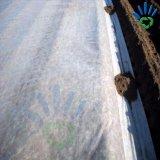 Tela no tejida de TNT para la cubierta vegetal de la cosecha de cubierta de la agricultura
