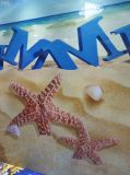 3D da melhor qualidade Lainate Flooring AC4 e AC5 de Jiangsu