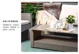 [هيغ-غرد] [رتّن] أريكة مع حديقة