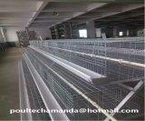 Las aves de corral automáticas del pollo enjaulan para el pollo y la pequeña granja de pollo (un tipo el marco)