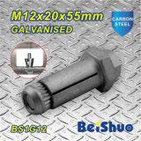 Tornillos de extensión de M12X20X55mm para las secciones huecos del acero estructural con la galvanización plateada