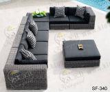 Напольные комплекты софы, мебель ротанга патио, комплекты софы сада (SF-340)