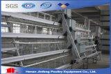 3-5 de Kooi van de Kip van de Laag van de Batterij van het Landbouwbedrijf van het Gevogelte van rijen (de Apparatuur van het Gevogelte)