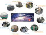 Genres de diamètres et de bille d'acier du carbone de pentes