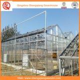 Groenten / Garden / Flowers / Farm Multi Span PC Sheet Greenhouse