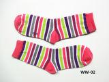 Donne Stripe Socks Cotton Sock per Lady