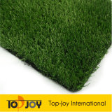 محاكاة عال عشب اصطناعيّة لأنّ كرة قدم ([كغ-2500ن])