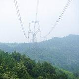 башня передачи силы линейного угла 220kv стальная (Сыч-форменный)