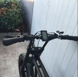 20inch Monkey Fat Tire Electric Bike