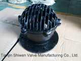O ferro de molde Pn10 flangeou válvula de aspiração