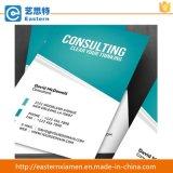 Publicité en papier artistique brillant de haute qualité A4 Flyer Promo Leaf